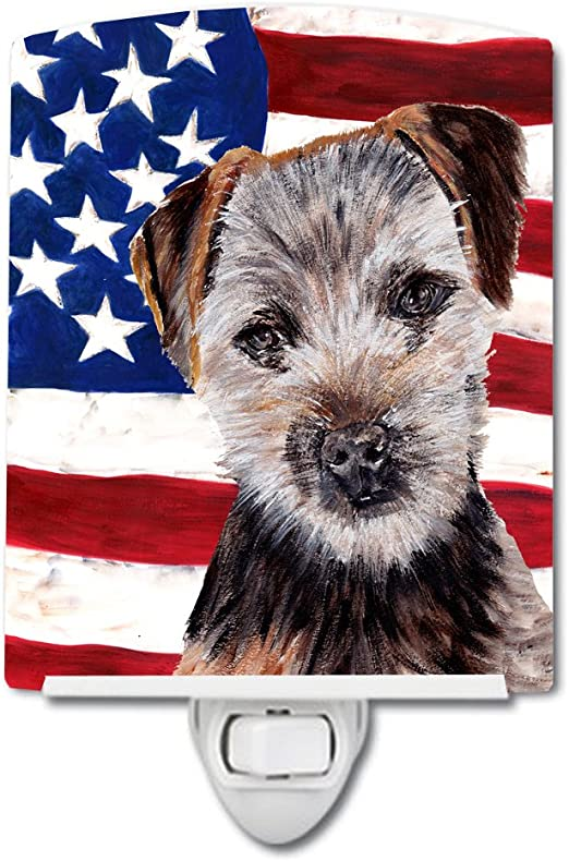 Carolines Treasures Norfolk Terrier Puppy American Flag Night Light 6 x 4 Multicolor