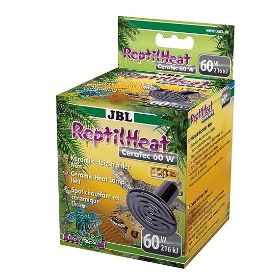JBL de cerámica Estufa para todos los terrarios, Reptil Heat: Amazon.es: Productos para mascotas