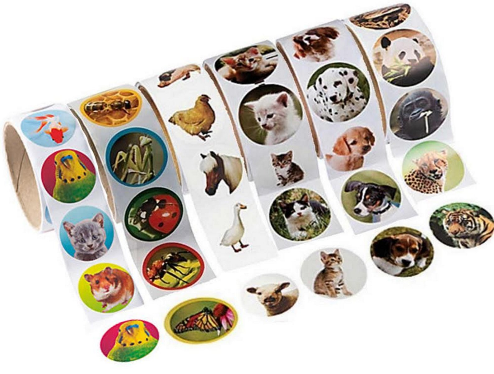 Animal Stickers, 600 Photo Stickers of Pets, Farm Animals, Zoo Animals, Insects Cats and Dogs