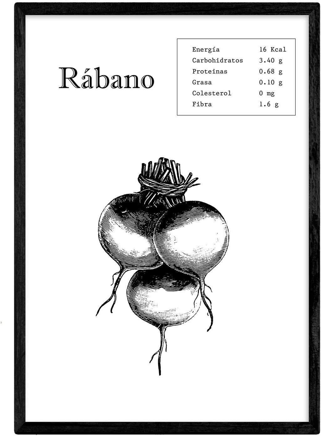 Nacnic Poster de Rábano. Láminas de frutas y verduras. Tamaño A4 con marco