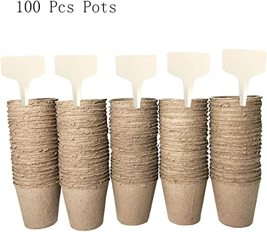 iWerDon - Juego de 100 macetas de Semillas de Fibra Biodegradable ...