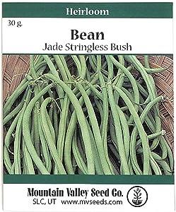 Mountain Valley Seed Company Jade Bush Bean Seeds - 30 Gram Packet - Non-GMO, Heirloom Green Bean Seeds - Vegetable Garden Seeds