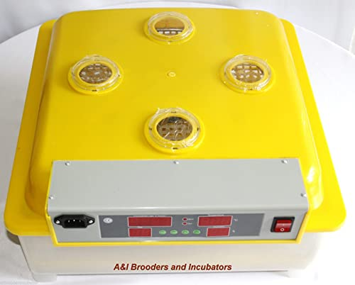 A&I 56Q Quail Egg Digital Incubator/Hatcher