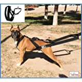 Big dog harness padded strong sturdy by KnK Dog Supplies | Weight Pulling Harness Vest Large Dogs Training quick Walking Keep your Dog amused and in Great Shape by draining accumulated energy!