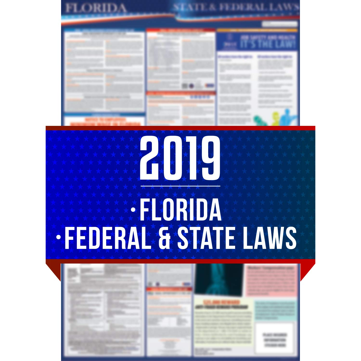 2019 Florida State and Federal Labor Laws Poster - OSHA Workplace Compliant 24'' x 36'' - All in One Required Posting - UV Coated by COMPLIANCE AUDIT CENTER (Image #1)