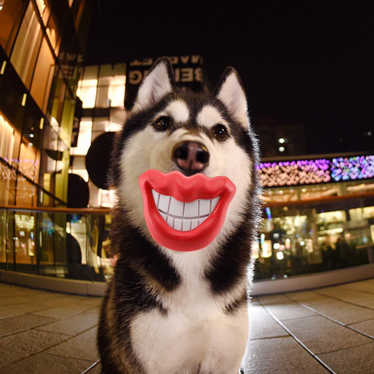 Amazon.com: Juguetes para perros Stajoy, juguetes de ...