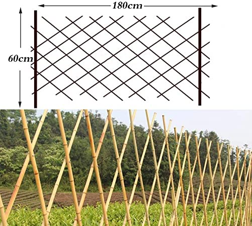 WY Garden - Valla de bambú para jardín, Marco de Escalada, decoración de jardín, 4 tamaños, bambú, 60X180CM: Amazon.es: Hogar