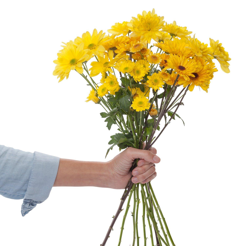 Chrysanthemums | Yellow - 20 Stem Count by Flower Farm Shop
