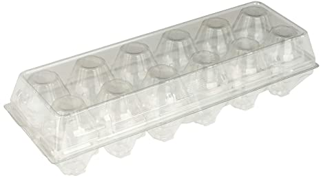 cdf42078c78f Recycled PETE Clear Plastic Disposable Tri-Fold Egg Cartons (Holds 1 Dozen  Eggs) by MT Products - 15 Pieces