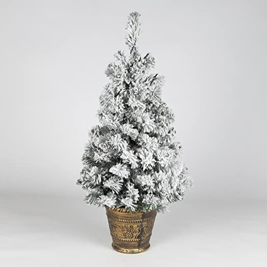 httpsimages nassl images amazoncomimagesi7 - Christmas Tree In A Pot