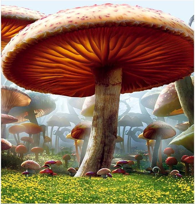 6 5 X 150 Alice Im Wunderland Fotografie Hintergrund Kamera