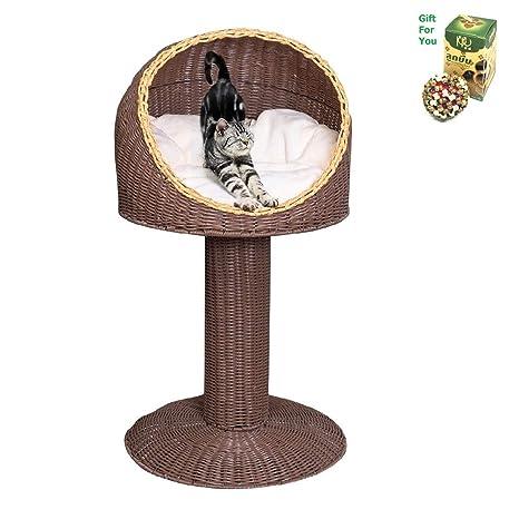 Amazon.com: Cama de ratán para gatos de 16.9 in con cojín de ...