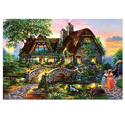 AmyDong Jigsaw Puzzle, 234 Piece Adult Children Puzzle, Puzzle Toy Landscape Pattern Interesting Jigsaw Educational Toy for Kids and Adults Unique Home Decorations and Gifts, Challenge Game at Home: Toys & Games