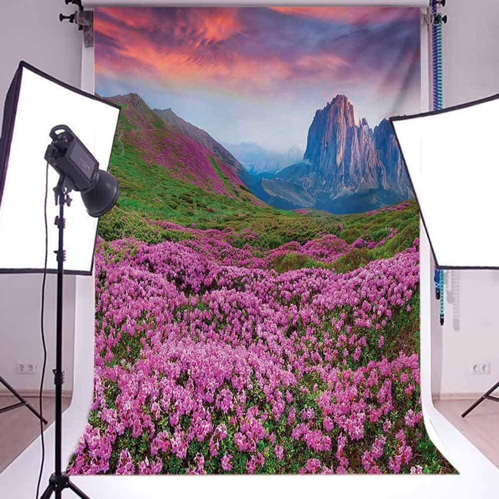 Nature 10x15 FT Photo Backdrops,Colorful Field of Blossom in The Morning Grand Dramatic Mountains Canyon Art Print Background for Baby Birthday Party Wedding Vinyl Studio Props Photography Pink Green