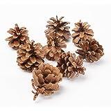 1kg (50) Decorazione di Natale austriaca per fioristi Pigne naturali