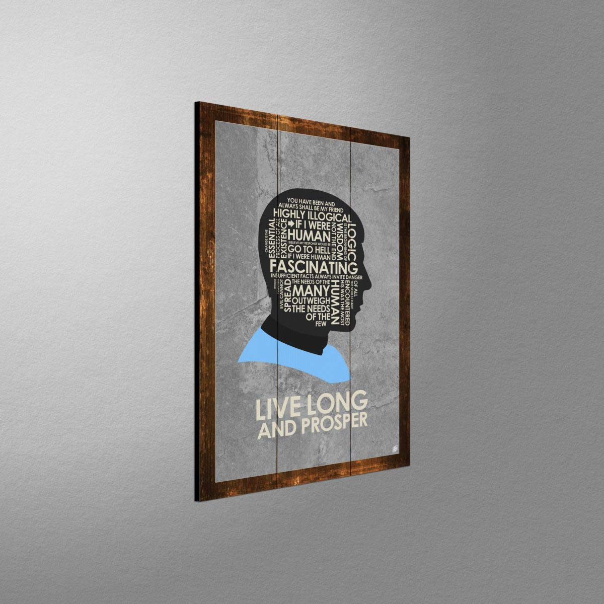 Amazon.com: Live Long and Prosper Rustic Wood Art Print by ...
