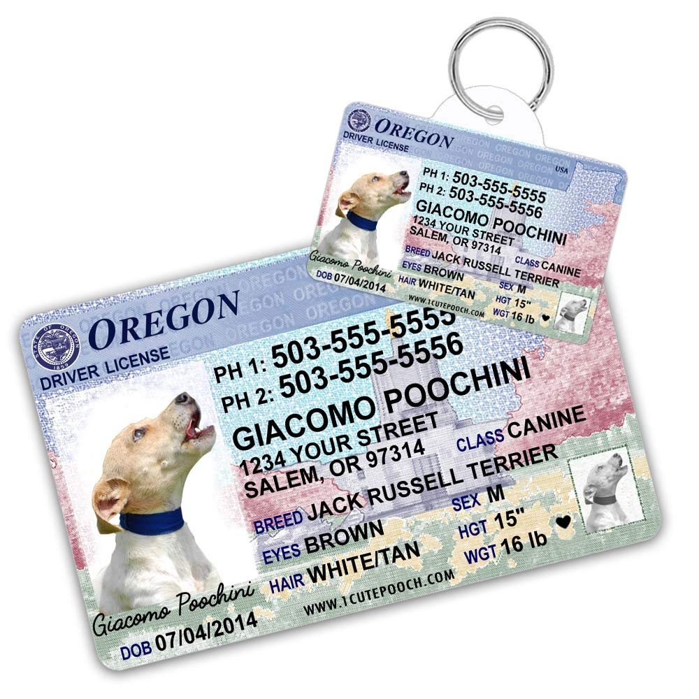 Oregon Driver License Custom Dog Tag for Pets and Wallet Card - Personalized Pet ID Tags - Dog Tags For Dogs - Dog ID Tag - Personalized Dog ID Tags - Cat ID Tags - Pet ID Tags For Cats by 1 Cute Pooch