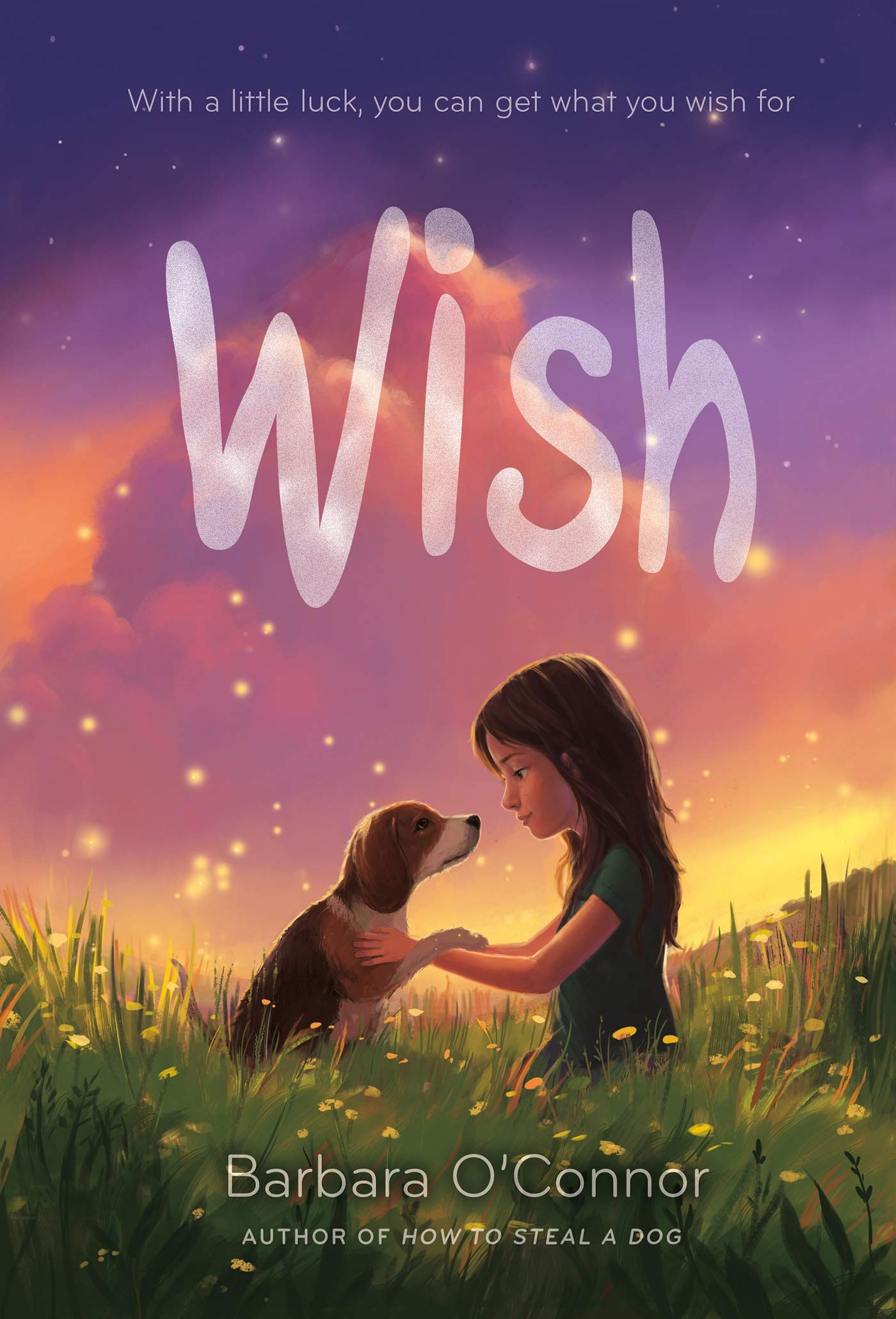 Wish: O'Connor, Barbara: 9780374302733: Amazon.com: Books