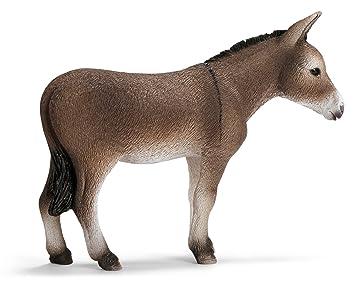 Schwarze dicke Esel