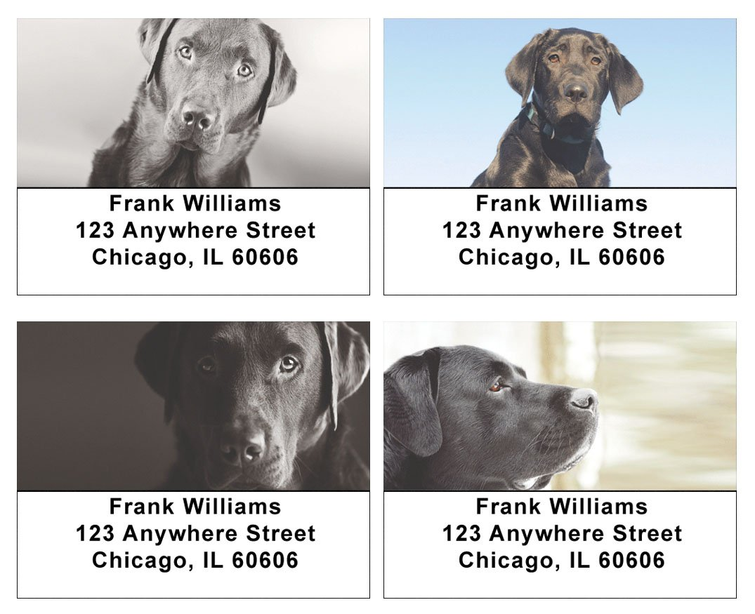 Black Labs Address Labels