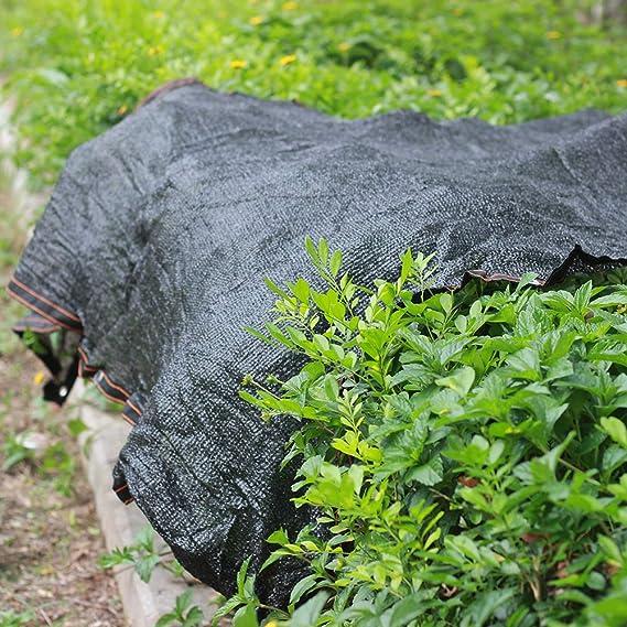 INFILM - Red de Tela para sombreado 70% de Sol, Malla Negra para el Sol, Bordes sellados con Arandelas, protección contra Rayos UV para Plantas de jardín, toldo de Malla: Amazon.es: Jardín