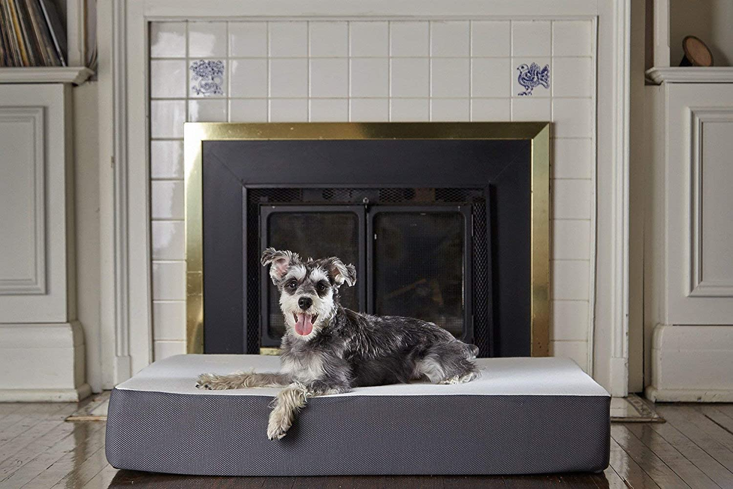 Amazon.com: The Dog Bed- UltraLuxe Line- espuma ...