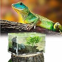 Caja de Alimentación de Insectos, 20X12X12cm Acrílico Transparente Estuche de Cría de Reptiles para Spide, Lagartija…