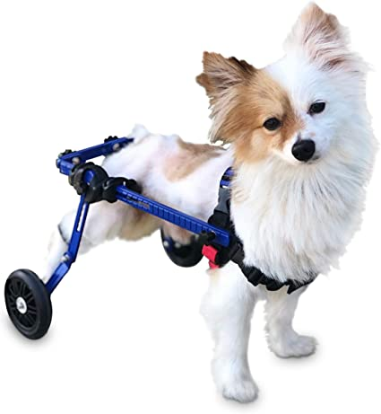 22-45 Kg HYYGMT-1 Dog Mobility Harness,Dogs Strollers,Dog wheelchair Dog Wheelchair for Large Dog Adjustable Stainless Steel Hind Leg Rehabilitation for Handicapped Dog