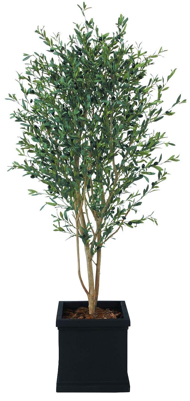 グリーンコレクション 造花 サイズ:180cm Green Collection AS-023 H1800 B07GY5QQFL