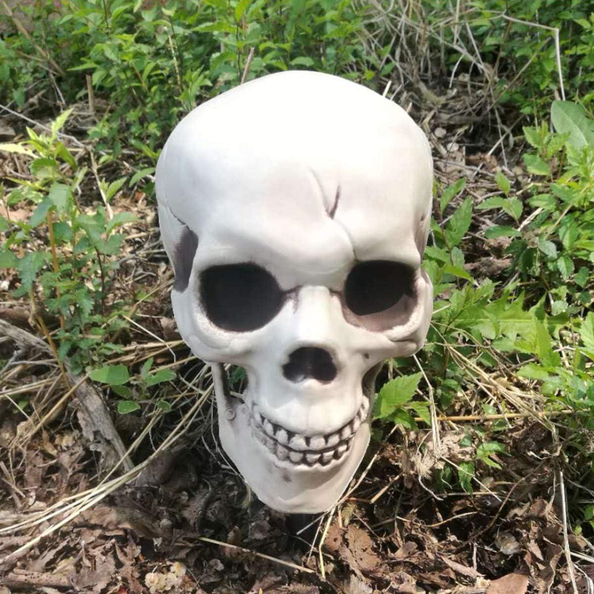 TOYANDONA Cr/âne R/éaliste Halloween Et Bras Squelette pour Les D/écorations de Jardin Pelouse Ext/érieure Halloween Squelette de Cr/âne D/écoratif Maison Hant/ée Halloween