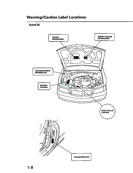 1999 Acura Slx Fuse Box Diagram