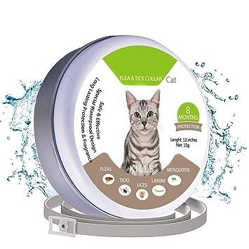 Chucalyn Collar de pulga & tick para gatos y perros pequeños, prevención de pulgas y