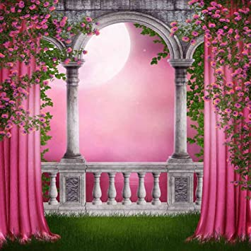 Amazoncom Pink Garden 10 x 10 CP Backdrop Computer Printed