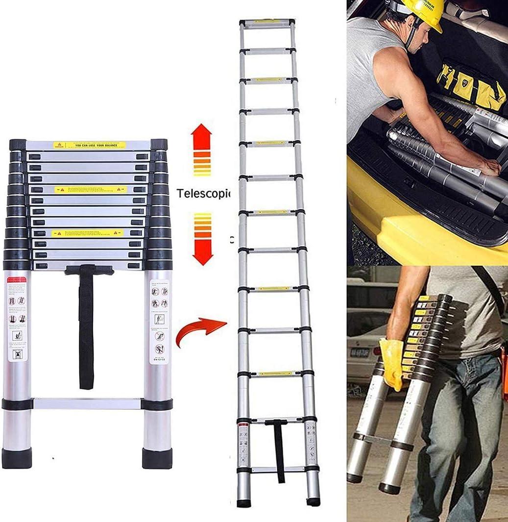 Paso Escalera Telescópica General Perfil de extensión de aluminio con sistema de retracción de un solo botón, Extensión telescópica Escalera de múltiples posiciones (Size : 2.0M/6.5ft): Amazon.es: Bricolaje y herramientas