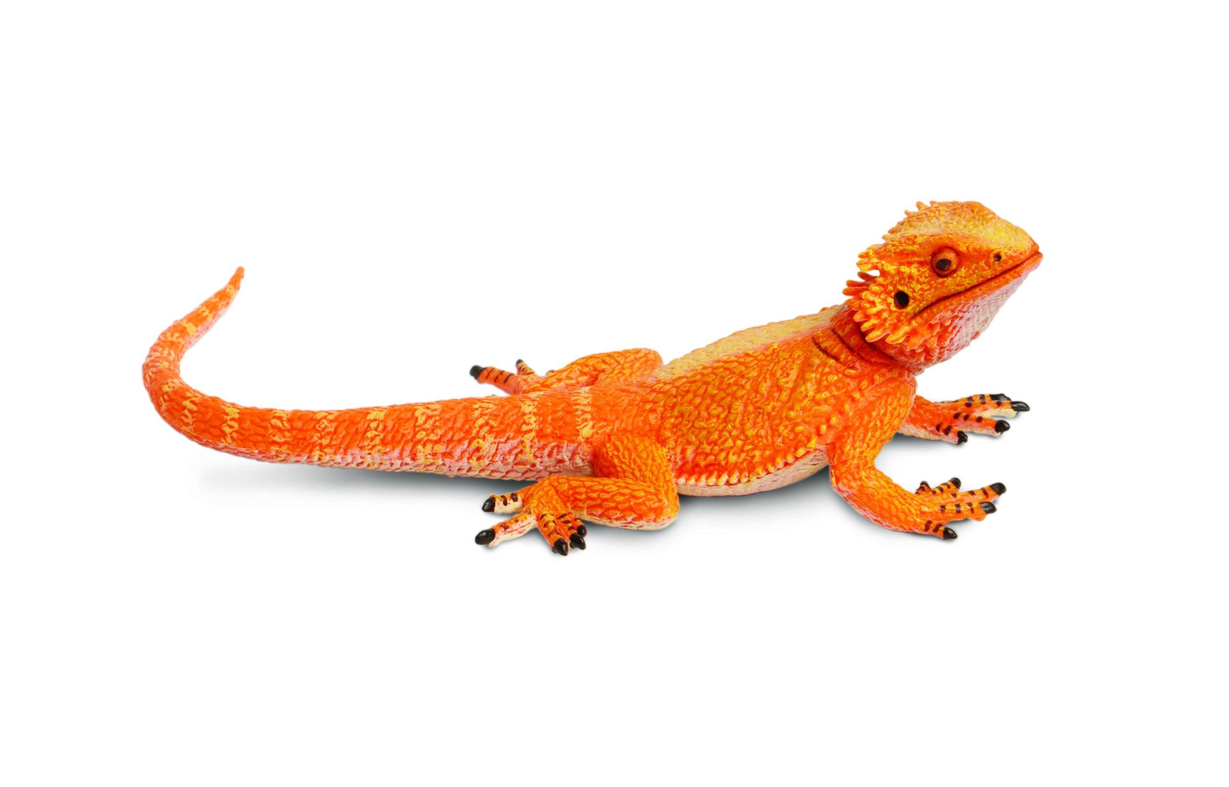 Safari Ltd Incredible Creatures Bearded Dragon