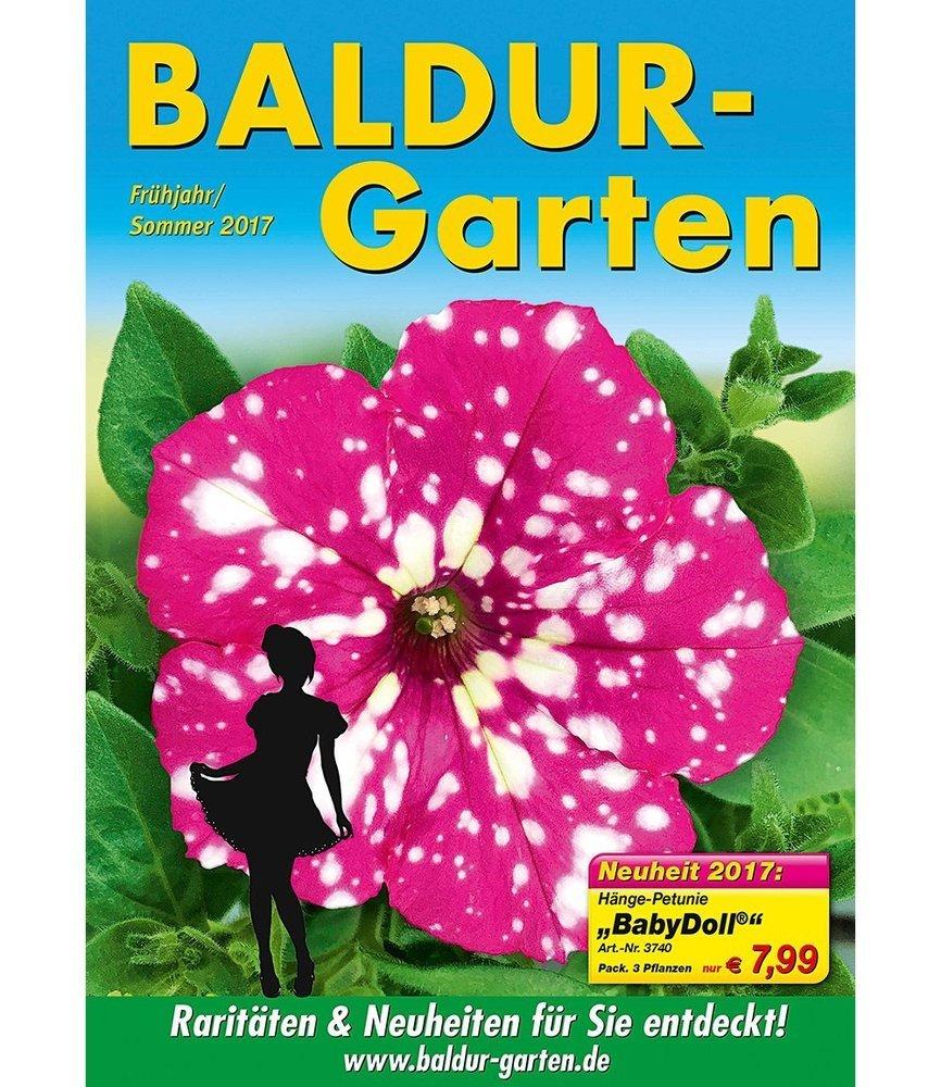 BALDUR-Garten Hänge-Petunie
