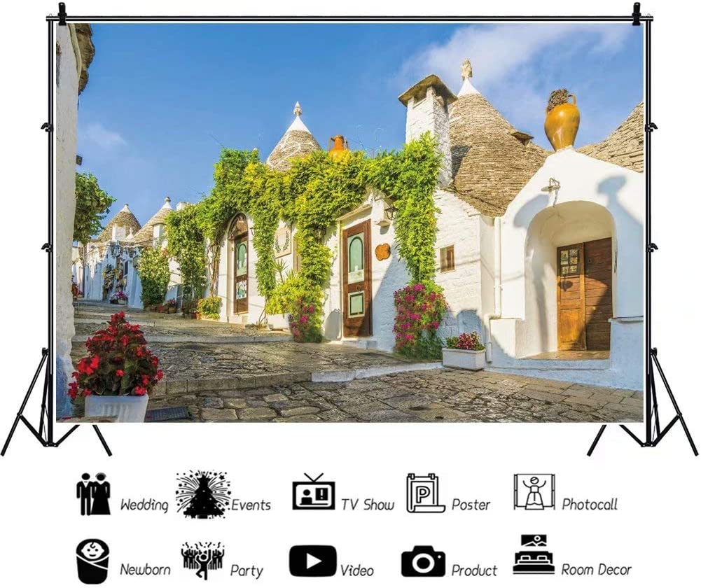DaShan 12x8ft Vintage Town Alley Backdrop Ancient Building Outdoor Wedding Photography Background Birthday Stone House Spring Flowers Street Travel Holiday Decor Kid Adult Portrait Photo Prop