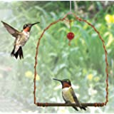 Songbird Essentials SEHHHUMS Copper Hummingbird Swing (Set of 1)