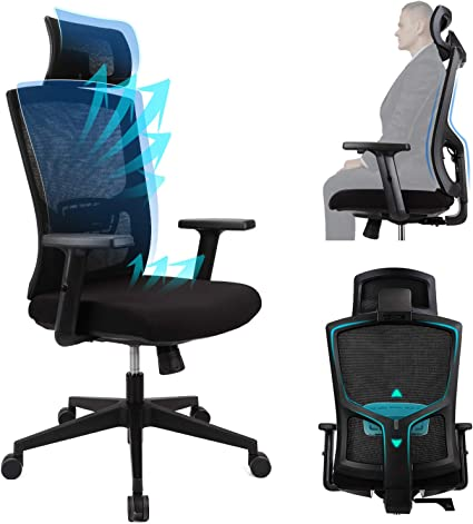 Ergousit Ergonomic Office Chair - High Back Desk Chair with Adjustable Lumbar Support &Thick Seat Cushion