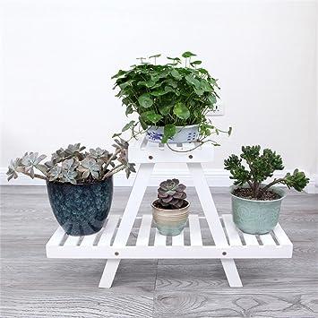 Weisse Blumen Racks Pflanze Florets Einfache Einfache Woody Garten