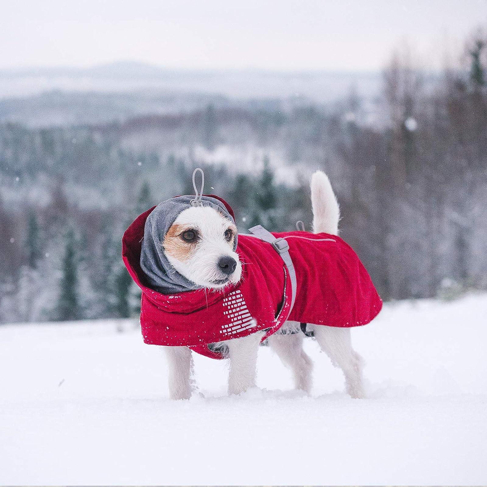 Hurtta Extreme Warmer Dog Winter Jacket Lingon HU932968 - 3