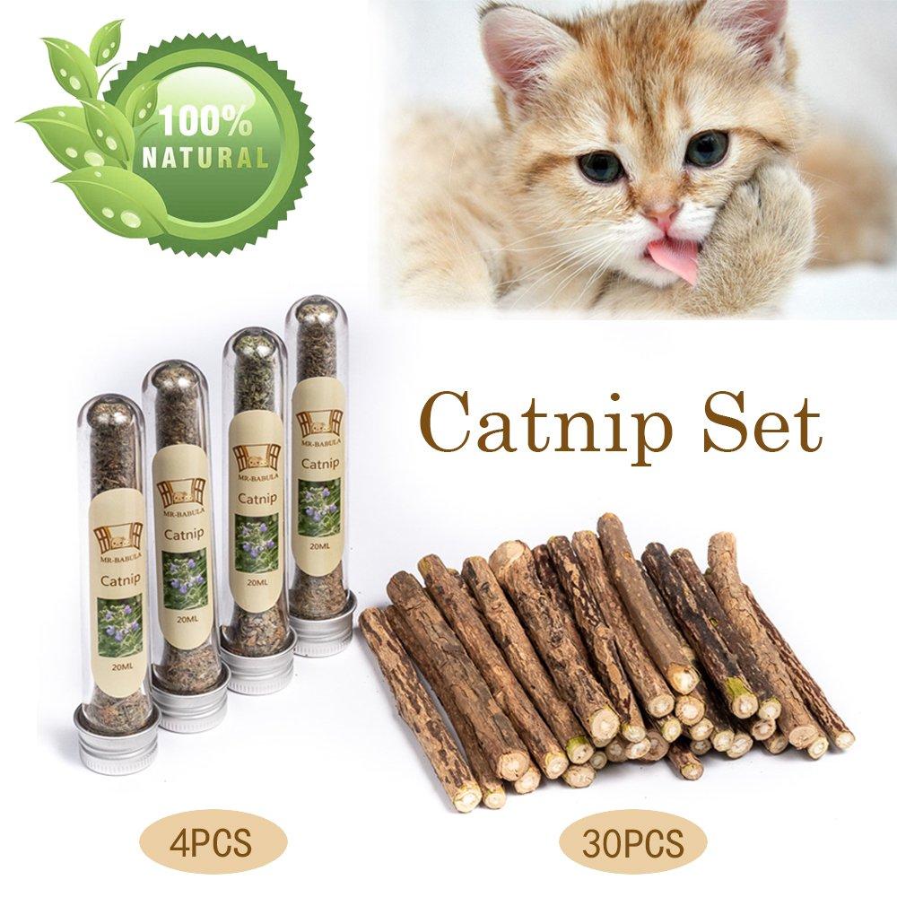 MR-BABULA Cat Catnip Sticks Toys, 100% Natural Silver Vine/Matatabi Dental Treats Molar Chew Toy,For Cat, 30PCS + 4PCS
