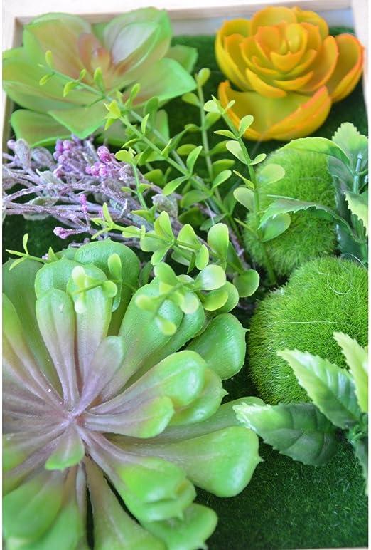 Jardín Vertical Decorativo con Plantas Artificiales Hogar y más - B: Amazon.es: Hogar