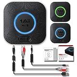 1Mii B06+ ブルートゥースレシーバー 本物の3D音効、Hi-Fiワイヤレスオーディオアダプタ Bluetooth 4.2 ホームステレオシステムサラウンド音楽ストリーミングのための低レイテンシ(APTXワーアダプタとアップグレード版)