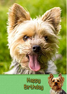 Yorkie Yorkshire Terrier Birthday Card 8x55 Mix Match