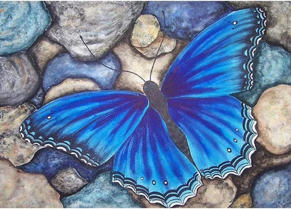 Diamond Painting 5D DIY Kits for Adults, Kids, Beginners. Home Office Decortaion. Gift Presents for Her Him Blue Butterfly On A Stone 15.7x11.8in 1 Pack by Light S Direct