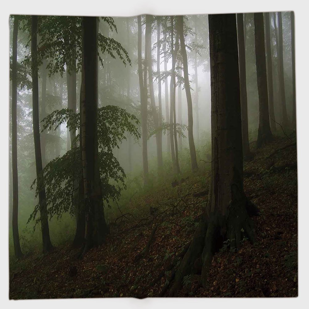 Cotton Microfiber Hand Towel,Forest,Mysterious Woods with Fog Wilderness Rural Untouched Vegetation Transylvania,White Green Brown,for Kids, Teens, and Adults,One Side Printing