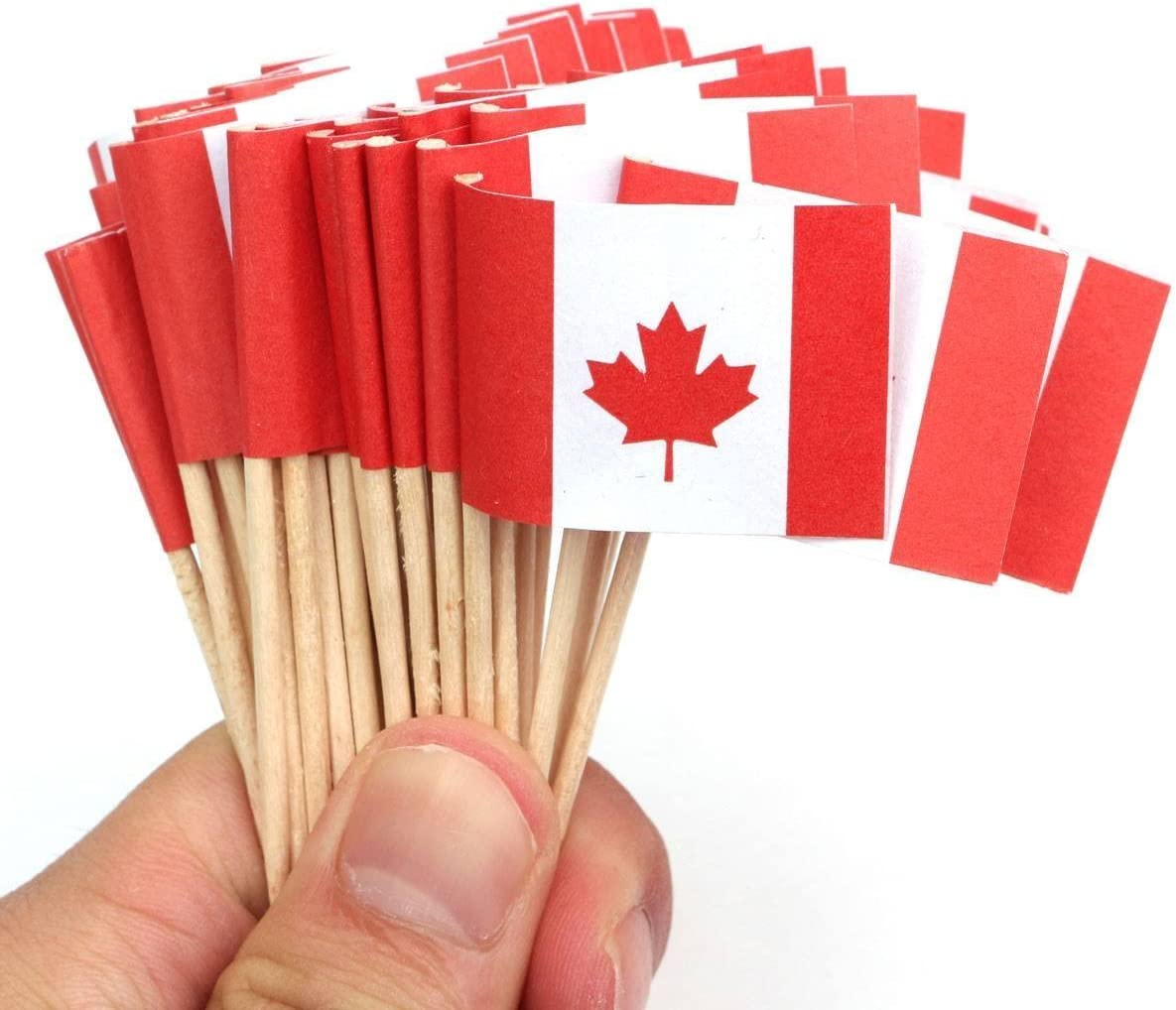 Cocktail Picks Party Supplies,100 Count France AKOAK Handmade 2.5 Inches National Flag Toothpicks for Cocktail Sticks Sandwich Fruit Cupcake Toppers