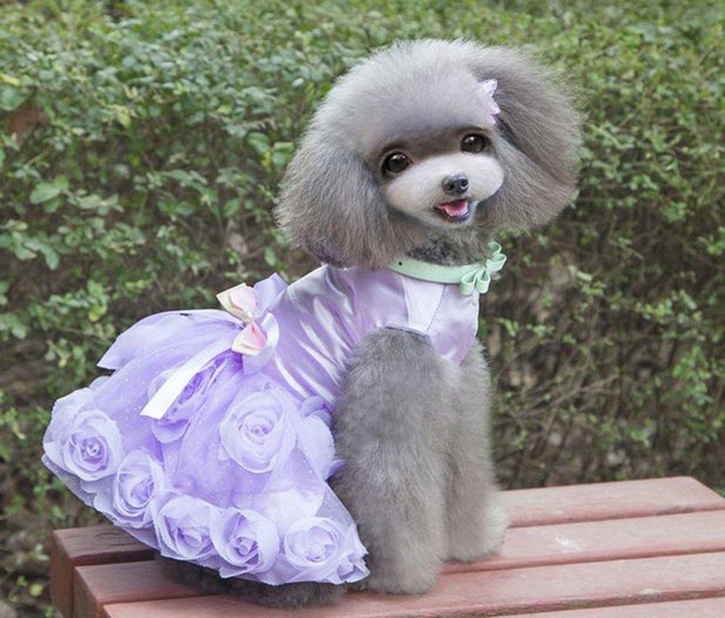 Legendog Gonna da Sposa per Cani Gonna Decor Rosa Vestiti dell Animale Domestico Abito da Cucciolo Costume da Cane