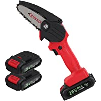 Seesii Mini Chainsaw,4-Inch Cordless Electric Protable Chainsaw with 2pcs Battery, One-Hand Chain Saw, Pruning Shears…
